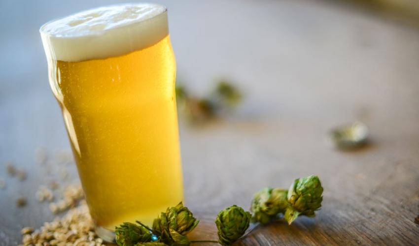 Два рецепта лёгкого пива.