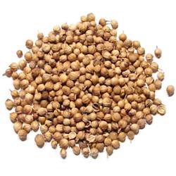 Кориандр- семена 20 граммов